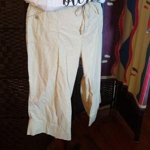 Bill Blass Stretch Capris - Tan Stripes - 18W